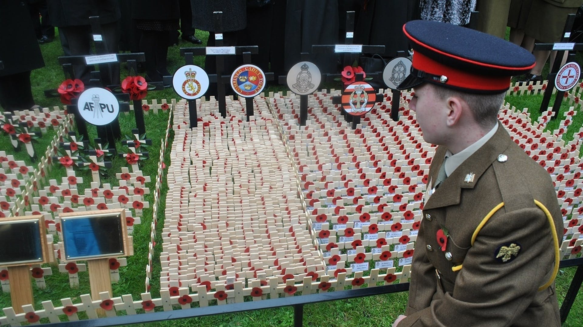ACF cadet at Field of Remembrance 1
