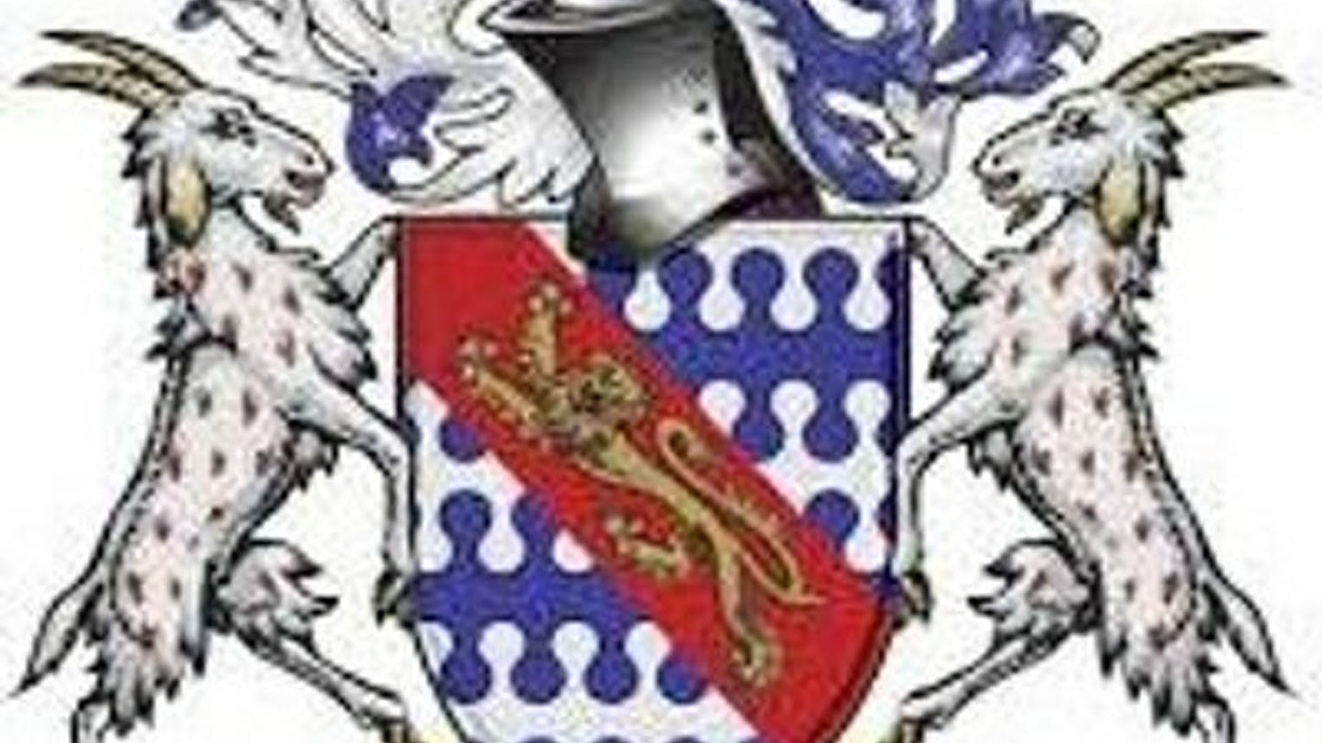 Knights Academy 1
